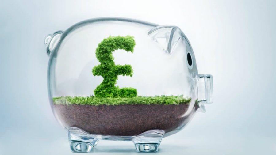 Hedge shaped as the pound symbol inside a glass piggy bank